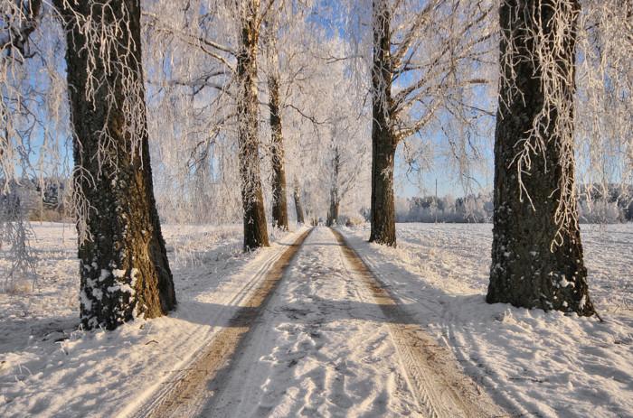 10 Increíbles Curiosidades De Finlandia