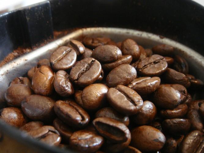 ¿Usar Granos De Café Restablece Realmente El Olfato?